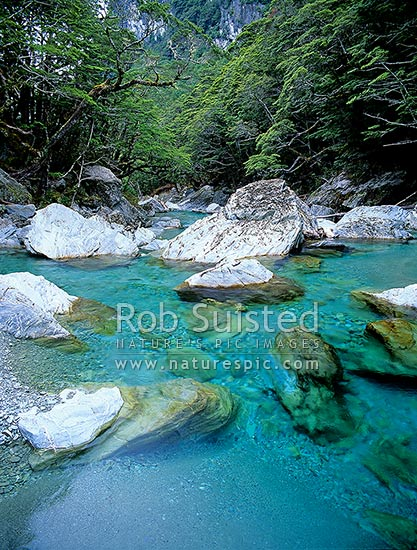 Beautiful blue water of the Routeburn River on the Routeburn Track, Mount Aspiring National Park, Queenstown Lakes District, Otago Region, New Zealand (NZ) stock photo.
