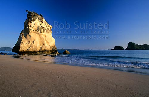 Cathedral Cove in early morning light; Marine Reserve; Hahei. Large Seastack, Coromandel Peninsula, Thames-Coromandel District, Waikato Region, New Zealand (NZ) stock photo.