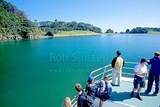 Cruising in the Bay of Islands. Roberton Island (Motuarohia Island), Bay of Islands, Far North District, Northland Region, New Zealand (NZ) stock photo.