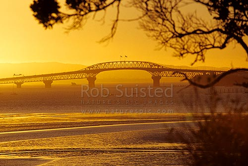 Auckland Harbour Bridge silhouetted at dusk, Devonport, North Shore City District, Auckland Region, New Zealand (NZ) stock photo.