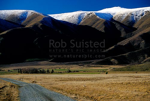 High country station with the snow capped Benmore Range behind, Twizel, MacKenzie District, Canterbury Region, New Zealand (NZ) stock photo.