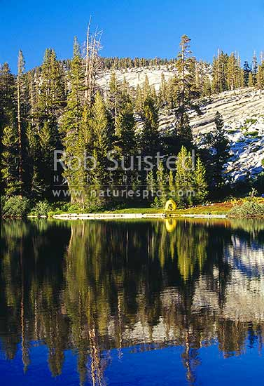 Hiking in Yosemite National Park. Camping at Sunrise Lakes. John Muir Trail, Yosemite National Park, USA, California District, California Region, United States of America stock photo.