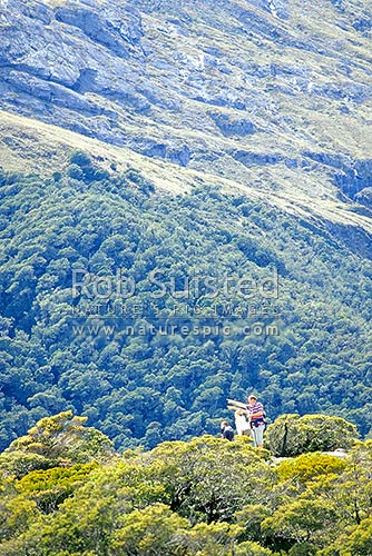 Day walking visitors to the Key Summit interpretative nature walk, Routeburn Track, Fiordland National Park, Southland District, Southland Region, New Zealand (NZ) stock photo.