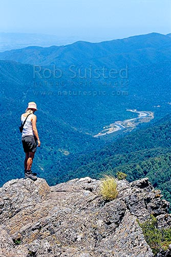 Woman tramper looking down to Totara Flats in the Waiohine River, from the Mount (Mt) Holdsworth / Powell Hut tramping track, Tararua Forest Park, Masterton District, Wellington Region, New Zealand (NZ) stock photo.