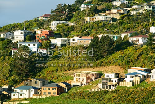 New housing subdivision. New houses being built. Suburban development. New homes, Newlands, Wellington City District, Wellington Region, New Zealand (NZ) stock photo.