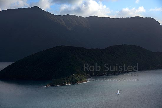 Queen Charlotte Sound with a lone yacht departing past Motuara Island (centre), seen from Long Island (Kokomohua), Marlborough Sounds, Marlborough District, Marlborough Region, New Zealand (NZ) stock photo.