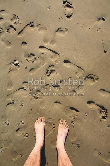 Men's footprints and tracks on beach sand, Wairarapa, New Zealand (NZ) stock photo.