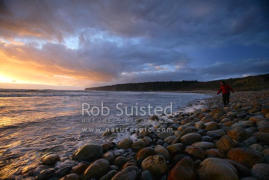 Dramatic evening clouds gathering over visitor walking on the remote southern Waitutu Coast beach, Wairaurahiri. Sunset, dusk, Waitutu Forest, Fiordland, Southland District, Southland Region, New Zealand (NZ) stock photo.
