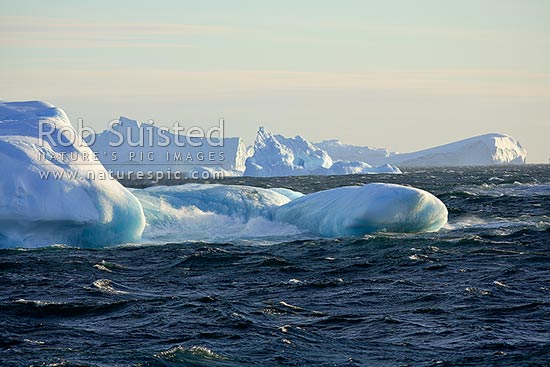 Icebergs, tabular and bergy bits, Terre Adelie Land, Antarctica stock photo.