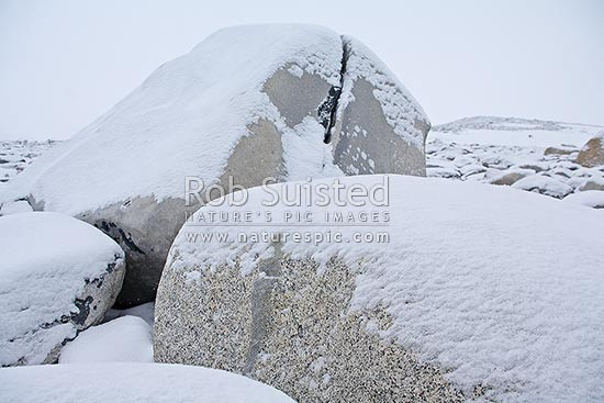 Snow on antarctic granite boulders on Inexpressible Island, Ross Sea, Antarctica stock photo.
