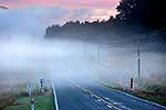 Early morning fog over road