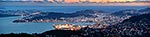Wellington City panorama at dusk