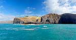 Banks Peninsula, Akaroa harbour hea