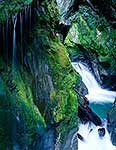 Wilderness waterfall, South Westland