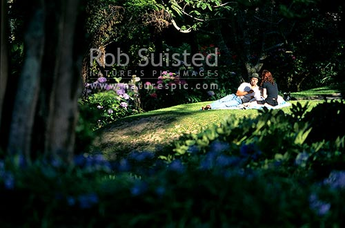 A couple picnicking in the Botanical gardens, Wellington, Wellington City District, Wellington Region, New Zealand (NZ) stock photo.