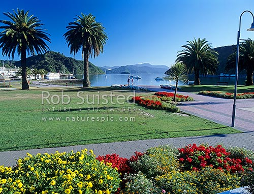 Picton foreshore, gardens, port and town at the head of Queen Charlotte Sound, Marlborough Sounds, Picton, Marlborough District, Marlborough Region, New Zealand (NZ) stock photo.