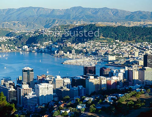 Wellington City and Harbour, Wellington, Wellington City District, Wellington Region, New Zealand (NZ) stock photo.